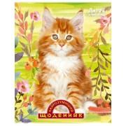 """Щоденник шкільний """"Найрозумніший. Кошеня"""" (м'яка обкл., 96 ст.)  - ТОВ """"Аркуш"""" 1B394-13"""
