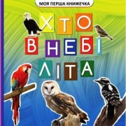 """Книга-картонка міні """"Хто в небі літа"""", ТМ Jumbi VR06041708-142"""