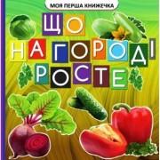 """Книга-картонка міні """"Що росте на городі"""", ТМ Jumbi VR06041705-144"""