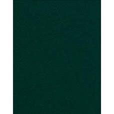 """Щоденник датований 2019 р. (А6, білий блок, лінія, темно-зелений) - ТОВ """"Аркуш"""" ЩД-28"""