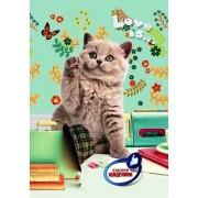"""Щоденник шкільний """"Класний. Котик"""" (тв. обкл., 96 ст.)  - ТОВ """"Аркуш"""" 1B1111-20"""
