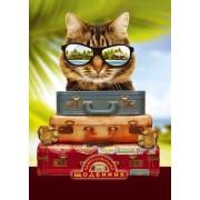 """Щоденник шкільний """"Найрозумніший. Кіт в окулярах"""" (тв. обкл.)  - ТОВ """"Аркуш"""" 1B1166-21"""
