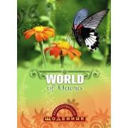 """Щоденник шкільний """"Найрозумніший. Метелик"""" (м'яка обкл., 96 ст.)  - ТОВ """"Аркуш"""" 1B1236-21"""