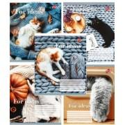 """Зошит шкільний 24 аркуші, клітинка - """"Бріск"""" (Теплі коти) - ТВ-109-2526-111"""