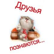 """Открытка """"Друзья познаются..."""" - Этюд К-1262"""