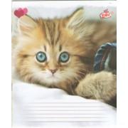 """Зошит """"Бриск"""", 18 аркушів, А5, клітинка, ТВ-108 (Коти, собаки) №25"""