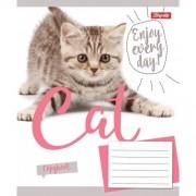 """Зошит А5, 24 арк., лінія """"CAT"""", 764087, 1вересня"""
