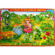 """Плакат А-2 (картон) """"Лесные и полевые цветы"""" ЭУ-П-33"""
