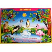 """Плакат А-2 (картон) """"Птицы"""" ЭУ-П-31"""