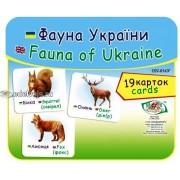 """Картки """"Фауна України"""" (19 карток), Эдельвейс ON-016У"""