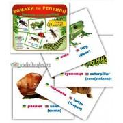 "Картки ""Комахи та рептилії"" (19 карток), Эдельвейс ON-05У"