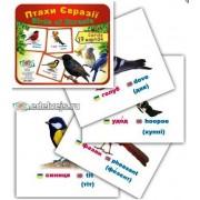 "Картки ""Птахи Євразії"" (19 карток), Эдельвейс ON-08У"