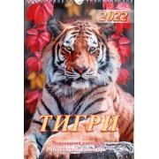 """Календар перекидний настінний - 2022 (24х33 см, спіраль) """"Тигри"""" - А3-01"""