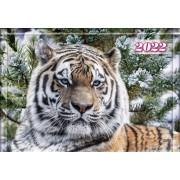 Календар квартальний на 2022 рік (1 пружина) - КБ-07