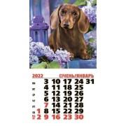Календар магнітний на 2022 рік на спіралі (Такса) - MNA-24