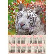 Календар-плакат, А2, на 2022 рік (Білий тигр) - А2-09
