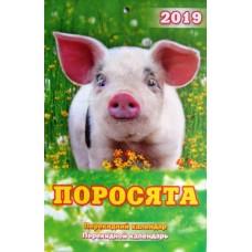 """Календарь перекидной настенный-2019 (15х22,5 см) """"Поросята"""" А5-01"""