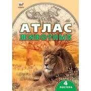 """Енциклопедія """"Атлас тварин"""" (тв. обкл., 64 ст., 24,5х33,5 см) - Талант 4149-42"""