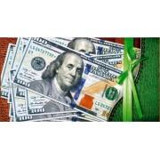 Конверт для грошей - Едельвейс КМ-134 (без тексту)