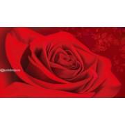 Конверт для грошей - Едельвейс КМ-182 (без тексту)