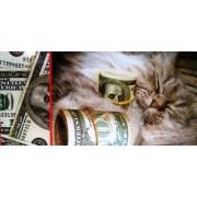 Конверт для грошей (без тексту) - Этюд Т-450