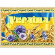 """Магніт тонкий """"Україна"""" (волошки, колосся) - Фоліо ФМ-138"""