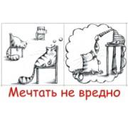 """Магнит на холодильник тонкий МГ-0081 """"Мечтать не вредно"""""""
