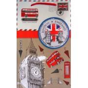 Пакет подарочный ламинированный (26х16х7 см) - Этюд ПКм-008