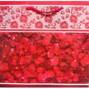 Пакет подарочный (22,5х23х10 см) - ПКС-11-04-1405