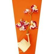 """Пакет ламинированный цветочный """"Орхидея"""" - POM-1126"""