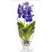 """Пакет ламинированный цветочный """"Орхидея"""" - POM-1448"""