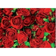 "Упаковочная бумага (100х70 см) Эд-УБ-030 ""Красные розы"" 5 шт."
